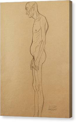 Nude Man Canvas Print by Gustav Klimt