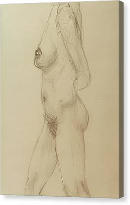 Nude Torso Standing Canvas Print by Rand Swift