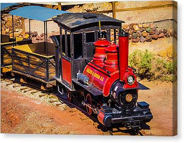 Number 5 Calico Train Canvas Print by Garry Gay