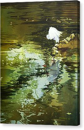 The Morning Mirror Canvas Print