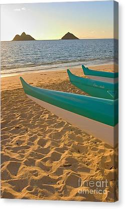 Oahu, Outrigger Canoes Canvas Print by Tomas del Amo - Printscapes