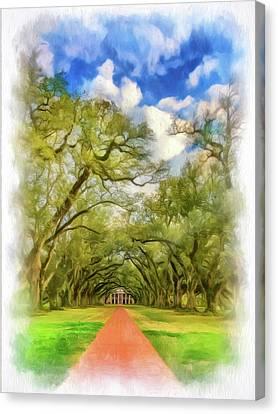 Oak Alley 7 - Paint Vignette Canvas Print by Steve Harrington