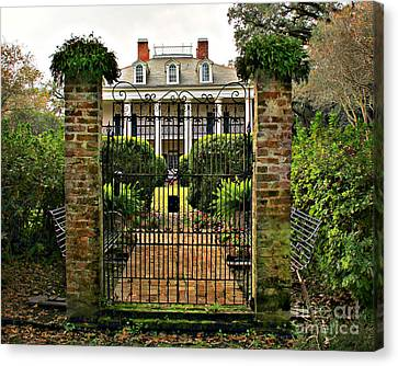 Oak Alley Gate Canvas Print by Perry Webster