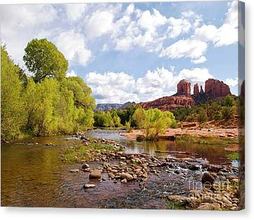 Oak Creek Canvas Print by Alex Cassels