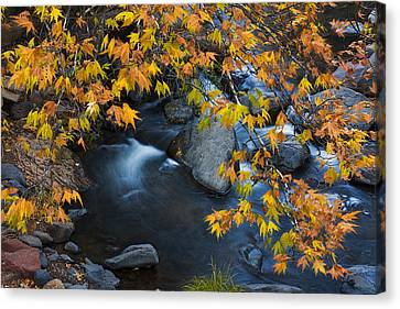 Oak Creek Canyon At Slide Rock In The Fall Canvas Print