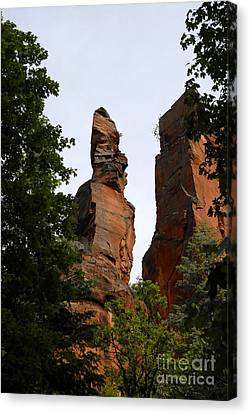 Oak Creek Canyon Canvas Print by David Lee Thompson