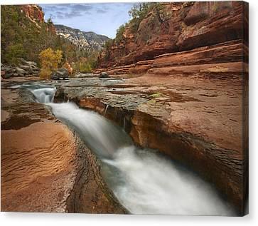 Oak Creek Canvas Print - Oak Creek In Slide Rock State Park by Tim Fitzharris