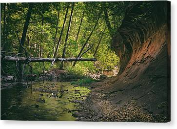 Oak Creek Canvas Print by Joseph Smith