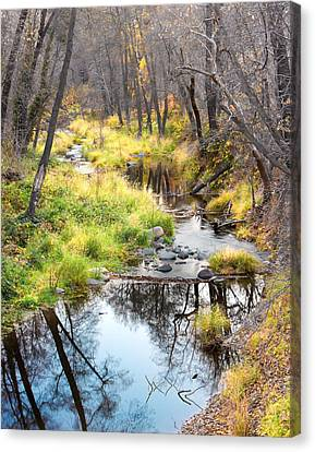 Oak Creek Twilight Canvas Print by Carl Amoth