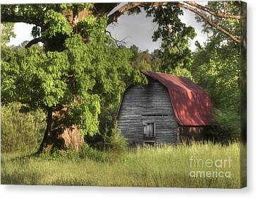 Oak Framed Barn Canvas Print by Benanne Stiens