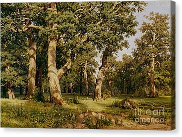 Oak Grove Canvas Print by Ivan Ivanovich Shishkin