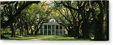 Oak Trees In Front Of A Mansion, Oak Canvas Print by Panoramic Images