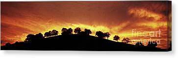 Canvas Print featuring the photograph Oaks On Hill At Sunset by Jim and Emily Bush
