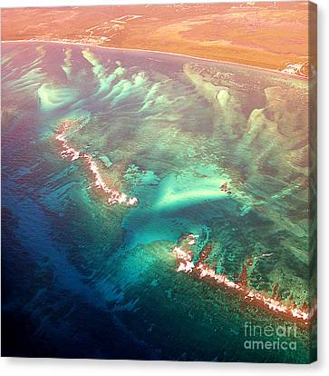 Oasis Found Canvas Print by Addie Hocynec