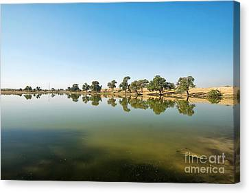 Canvas Print featuring the photograph Oasis by Yew Kwang