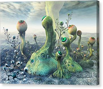 Observation Canvas Print by Jutta Maria Pusl