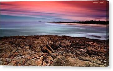 Ocean Beauty 6666 Canvas Print by Kevin Chippindall