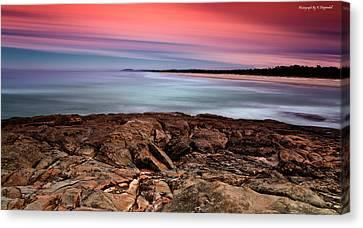 Ocean Beauty 6666 Canvas Print