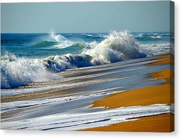 Ocean Delight Canvas Print by Dianne Cowen