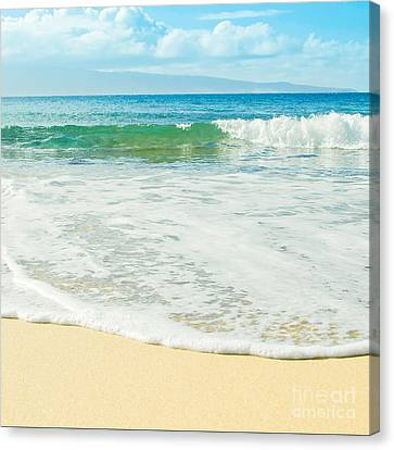 Ocean Dreams Canvas Print by Sharon Mau
