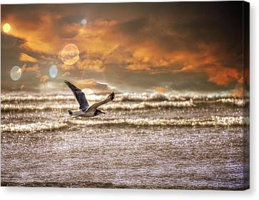 Beach Canvas Print featuring the photograph Ocean Flight by Aaron Berg