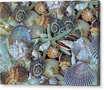 Ocean Gems 5 Canvas Print by Lynda Lehmann