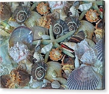 Canvas Print featuring the photograph Ocean Gems 5 by Lynda Lehmann