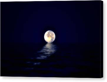 Ocean Moon Canvas Print by Bill Cannon