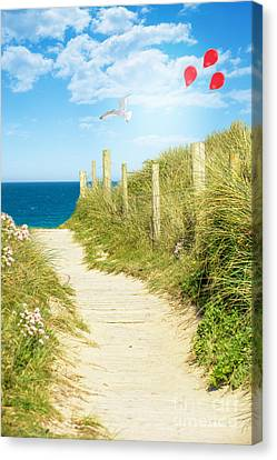 Ocean Path In Cornwall Canvas Print by Amanda Elwell