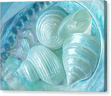 Ocean Pearl Treasure Canvas Print by Gill Billington