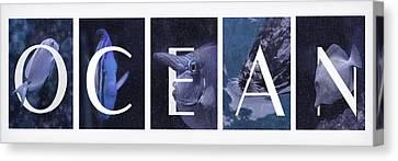 Canvas Print featuring the photograph Ocean by Robin-Lee Vieira