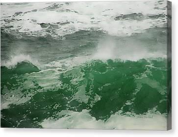 Ocean Spray Canvas Print by Donna Blackhall