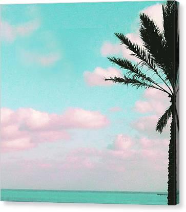 Tropical Beach, Ocean View Canvas Print by Inge Lewis