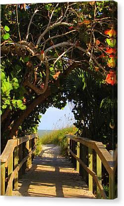 Ocean Walkway Canvas Print