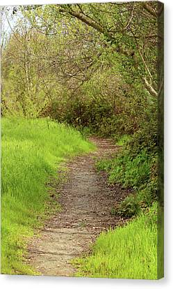 Canvas Print featuring the photograph Oceano Lagoon Trail by Art Block Collections