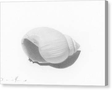 Ocean's Treasure Canvas Print