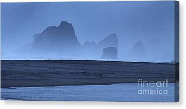 Oceanside Hoodoos Along The Oregon Coast Canvas Print by Max Allen