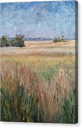 Canvas Print featuring the painting Ochlockonee Marsh by Pam Talley