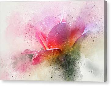 Abstract Digital Canvas Print - O'connor Rose Abstract by Terry Davis