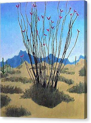 Ocotillo Canvas Print by Bernard Goodman