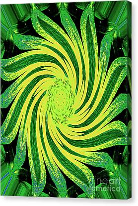 Canvas Print featuring the digital art Octagonal Painting Put Into Motion by Merton Allen