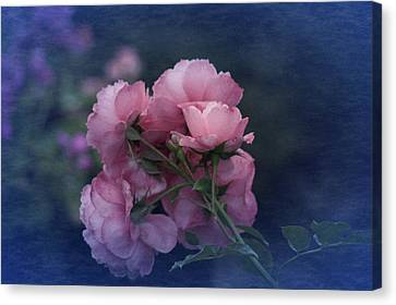 Canvas Print featuring the photograph October 2016 Roses No. 2 by Richard Cummings