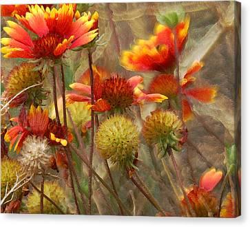 October Flowers 2 Canvas Print by Ernie Echols