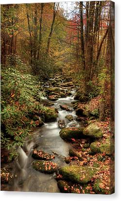 October Flowing Through The Smokies Canvas Print by Mike Eingle