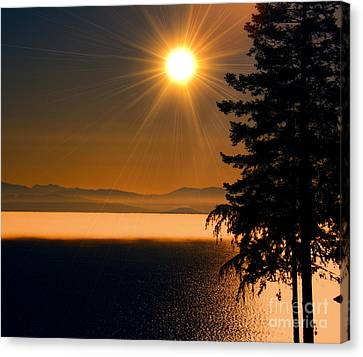 October Fog Canvas Print