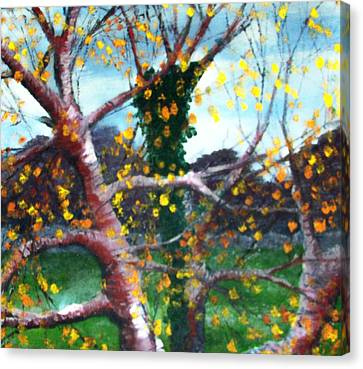 October In Leitrim Canvas Print by Jean Davies