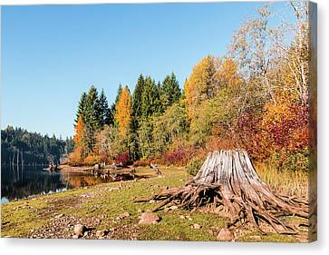 October On The Lake Shore Canvas Print