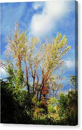 October Sunny Afternoon Canvas Print
