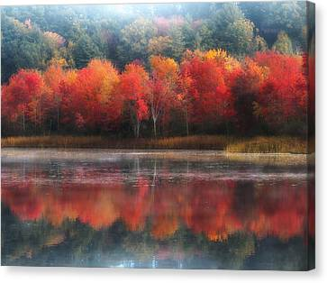 October Trees - Autumn  Canvas Print