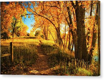 Canvas Print featuring the photograph October's Light by John De Bord